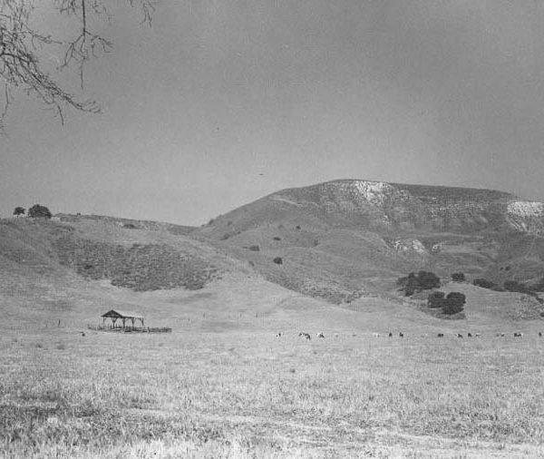 1950s Agoura