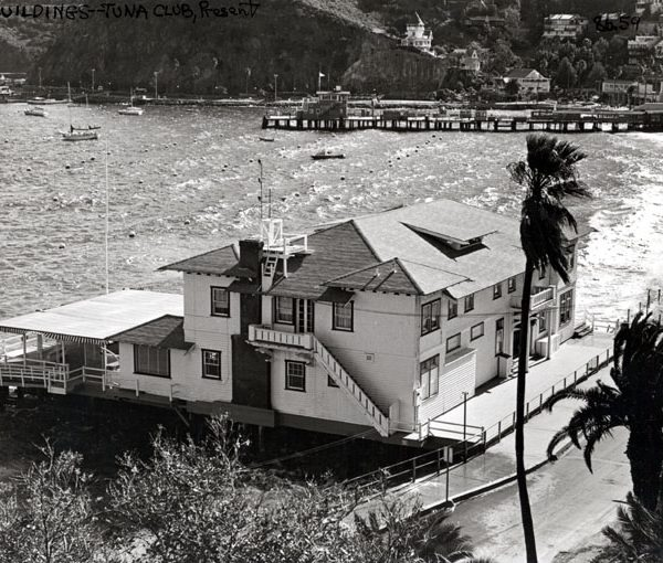 Tuna Club and Avalon Bay, 1984