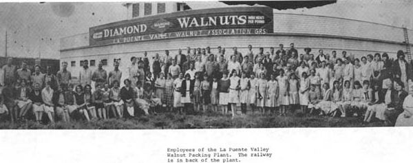 Employees of the La Puente Valley Walnut Packing Plant