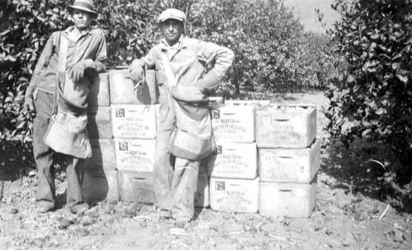 Two citrus pickers in front of North Whittier Heights Citrus Association crates