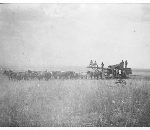 First combine in the Antelope Valley on the Godde-Stratman Ranch, early 1900s