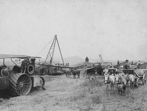 Farm workers and a threshing machine, San Fernando Valley