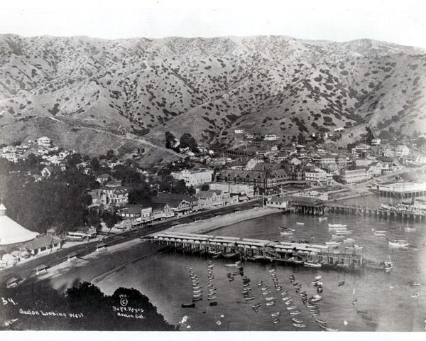 Town of Avalon and Avalon Bay, 1911