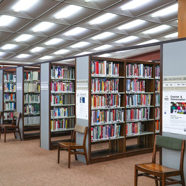 Angelo M Lacoboni Library bookcase full of books