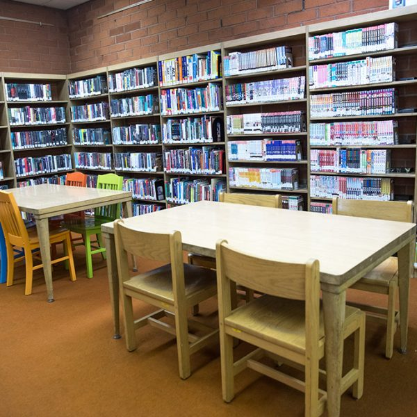 bookcases and sitting areas hollydale